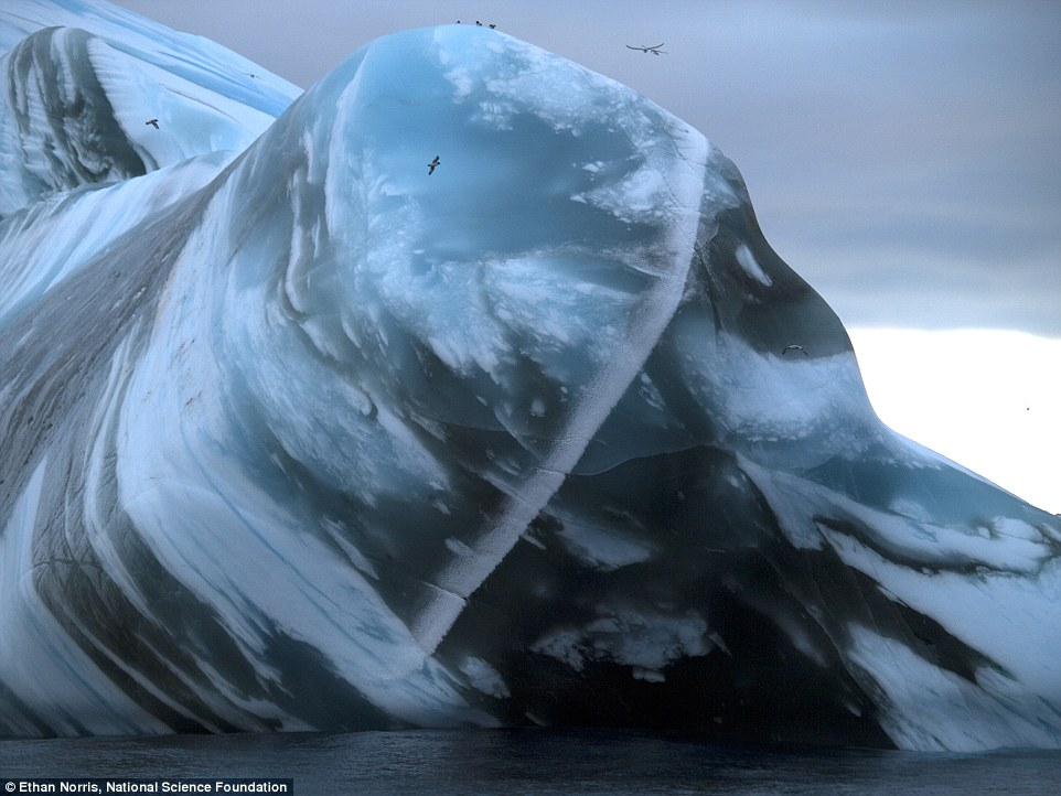 Large old icebergs contain centuries of windblown sediment and minerals, visible as layers when they roll over.