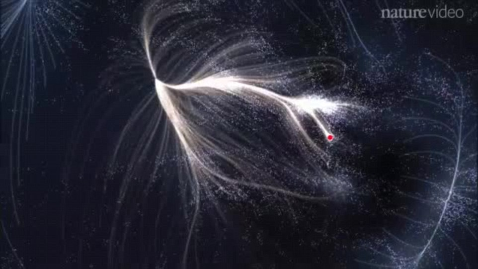 The gigantic super-cluster of stars, planets and asteroids, which stretches 500 million light years across and has the mass of a hundred quadrillion suns, has been named Laniakea