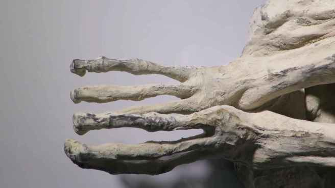 7_nazca_mummy_three_toes_a13b7d6b48f0c52e967105126163c2ed_1600x0