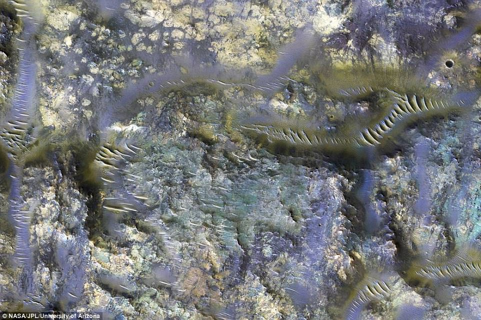 A stunning new infrared image from NASA's Mars Reconnaissance Orbiter has revealed the worm-like fissures blanketing the floor of a mysterious crater on Mars. The image shows the spread of features known as 'ejecta,' or the material thrown across the surface after an impact