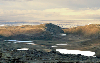 Greenland tundra near the ice sheet.